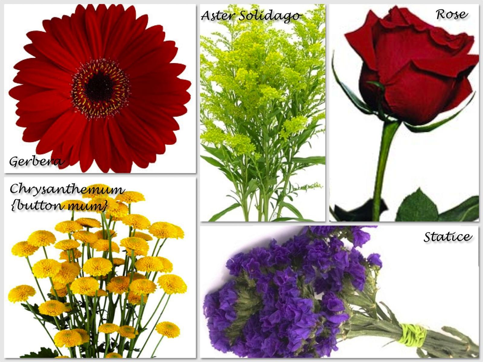 pin flower types on pinterest