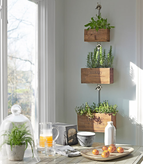 Build Wooden Plant Stands