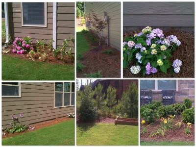 2013.05.31 Garden Images