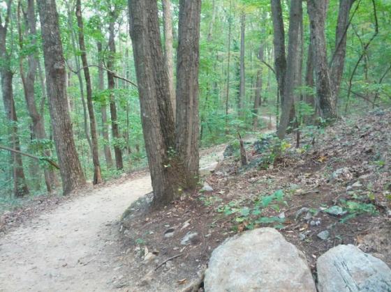 Sawnee Mtn Hike 3